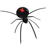 Black Widow Spider Gifts