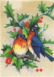 Robins & Holly Christmas Cards, Apparel & Gifts!