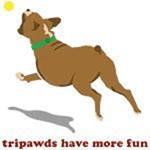 Tripawds Have More Fun