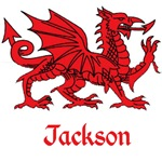 Jackson Welsh Dragon
