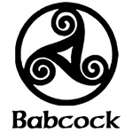 Babcock Celtic Knot