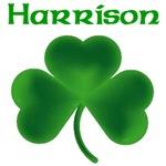 Harrison Shamrock