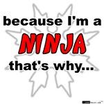 Ninja That's Why