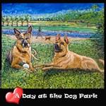 Carolina Dog at Dog Park