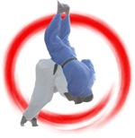 Ippon Throw