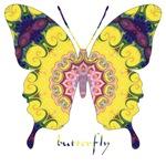 Omm Butterfly