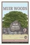 Muir Wods NP