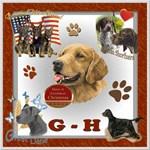 DOG BREED G-H