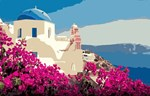 French Riviera Floral Bougainvillea