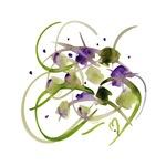 Atom Flowers #20