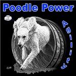 Poodle Power Agility