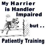 Harrier Agility
