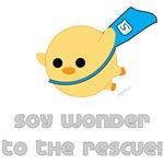 Soy Wonder Flying