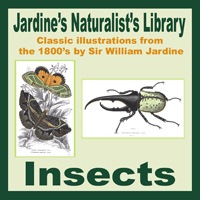 Jardine's Insects
