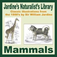 Jardine's Mammals