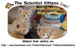 The Scientist Kittens