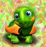 Green Turtle Baby 3D