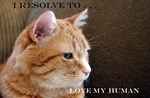 I Resolve To . . . Love My Human!