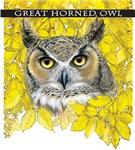 autumn Great Horned Owl