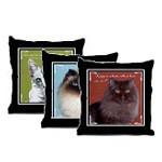 Cat Fancy Pillows