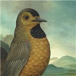 Bachman's Warbler (Vermivora bachmanii)