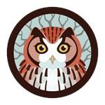 Eatern Screech Owl