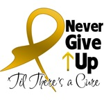 Never Give Up Appendix Cancer Shirts and Gifts