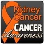 Kidney Cancer Shirts (Orange)