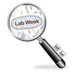 Lab Magnify