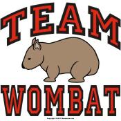 Team Wombat III