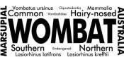 Wombat Words