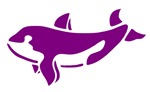 Purple Killer Whale