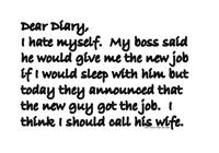 Dear Diary 13