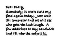 Dear Diary 18