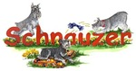 Schnauzer Name Games