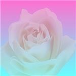 Gradient Rose Cat Forsley Designs