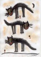 Tomcats!