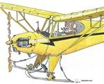 Cool Cub Ski Plane