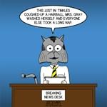 Cat Breaking News