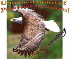 Untamed Spirit Two of Personal Freedom