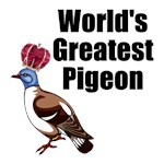 World's Greatest Pigeon