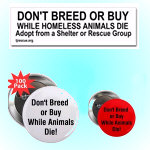 Bumper Stickers- Buttons- Magnets- Patches