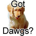 Dawgs n' Kats