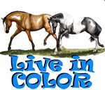 Paint Horses, Live In Color